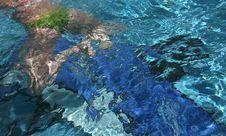 Free Swiming Royalty Free Stock Photo - 1064805