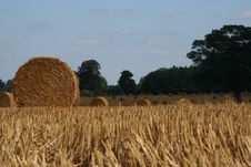 Free Straw Bale 1 Stock Photography - 1066932