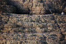 Free Sand Cliff In Closeup Royalty Free Stock Photos - 1068638