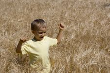 Free Boy In Cereal Stock Photography - 1069072