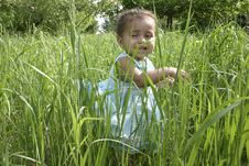 Free Amara In High Grass Royalty Free Stock Photos - 1069988