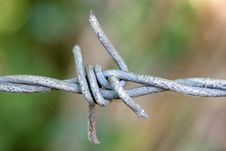 Free Barbed Wire Royalty Free Stock Photos - 10603858