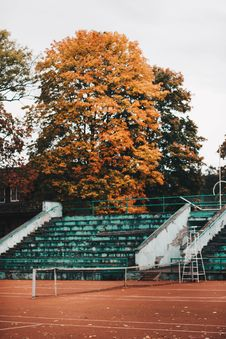 Free Empty Green And White Concrete Bleachers Near Brown Leaf Tree At Daytime Stock Photography - 106058542