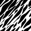 Free Seamless Zebra Texture Black And White Stock Image - 10634891