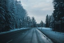 Free Gray Asphalt Road Between Trees Covered By Snows Stock Images - 106306424