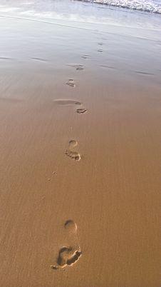 Free Shore, Sand, Water, Mudflat Royalty Free Stock Image - 106402546