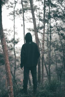 Free Man Wearing Black Hoodie With Black Pants Standing In The Middle Of Forest Stock Photo - 106424370