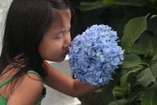 Asian Chinese Girl Smelling Flower Royalty Free Stock Photos