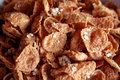 Free Cereal Flakes Closeup Royalty Free Stock Photo - 1074475