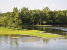 Free Wetlands Stock Image - 1070951