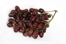 Free Grape Royalty Free Stock Photos - 1072368