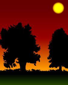 Free Sunset Royalty Free Stock Image - 1075816