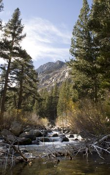 Free High Sierra Creek Stock Images - 1076174