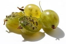 Free Juicy Gooseberry Stock Photo - 1077470