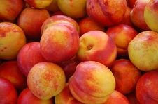 Free Nectarines Stock Images - 1078044