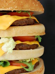 Free Hamburger Royalty Free Stock Photography - 10706367