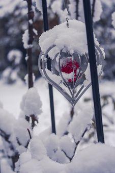 Free Snow, Winter, Freezing, Branch Stock Photos - 107374793
