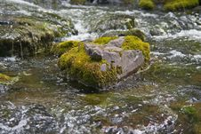 Free Water, Stream, Body Of Water, Rock Royalty Free Stock Photo - 107374895