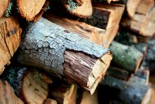 Free Wood, Trunk, Lumber Stock Photography - 107439212