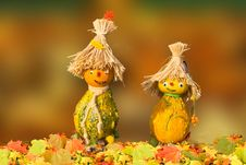 Free Yellow, Leaf, Scarecrow, Grass Stock Photos - 107810823