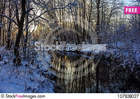 Free Winter Frosty Sunny Landscape Royalty Free Stock Photography - 107838027
