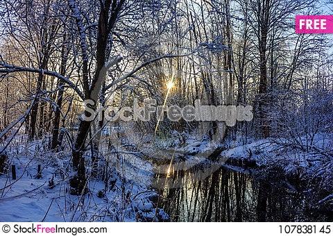 Free Winter Frosty Sunny Landscape Royalty Free Stock Photo - 107838145