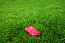 Free Green, Grass, Lawn, Meadow Stock Photos - 107888883