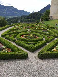 Free Garden, Botanical Garden, Vegetation, Flora Royalty Free Stock Photos - 107901268