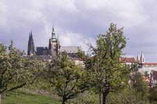 Free Sky, Tree, Spire, City Stock Image - 107901461