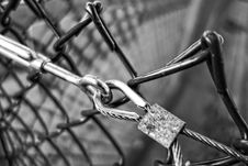 Free Bicycle, Road Bicycle, Black And White, Bicycle Wheel Stock Photo - 107956180