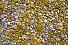 Free Rock, Pebble, Gravel, Mixture Royalty Free Stock Images - 107956859