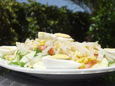 Free Salad Royalty Free Stock Photos - 1081638