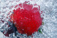 Free Fresh Strawberry In Water Royalty Free Stock Photos - 1084808