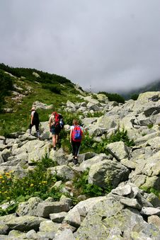 Mountain Walk Stock Photography