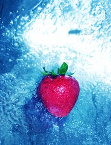 Free Strawberry In Clear Water Stock Photography - 1087292