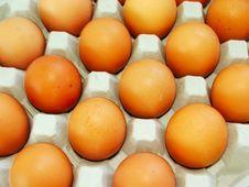 Free Eggs Royalty Free Stock Photos - 1087358