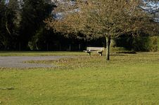Free Lonely November Bench Royalty Free Stock Image - 1088446