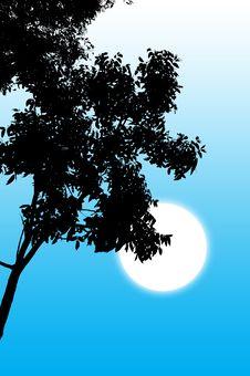 Free Tree Silhouette Stock Image - 1089121