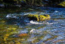 Free Water, Stream, Body Of Water, Watercourse Royalty Free Stock Photo - 108019585
