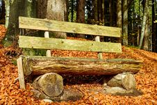 Free Wood, Leaf, Bench, Woodland Royalty Free Stock Photos - 108316568