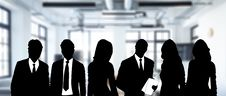 Free Business, Public Relations, Professional, Business Executive Stock Image - 108316811