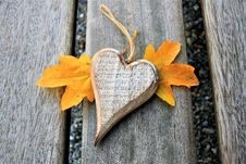 Free Leaf, Wood, Autumn Royalty Free Stock Photos - 108317048