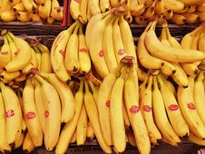 Free Banana, Banana Family, Yellow, Produce Royalty Free Stock Photo - 108523265