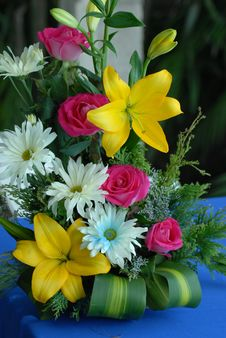 Free Flower, Plant, Yellow, Floristry Stock Image - 108523681