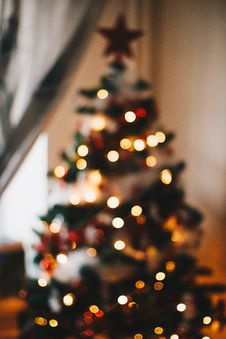 Free Green Christmas Tree With String Lights Royalty Free Stock Photography - 108798527