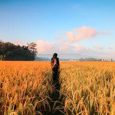 Free Woman In Black Hijab Headscarf Walking On Field Royalty Free Stock Photography - 108798767