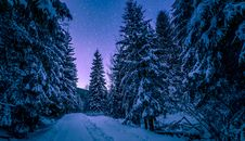 Free Photography Of Trees Covered With Snow Stock Photos - 108798903