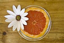 Free Juicy Grapefruit Royalty Free Stock Images - 10883239