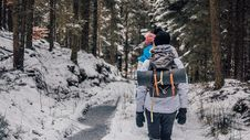 Free Two People Walking In Woods With Snow Stock Photo - 108995620