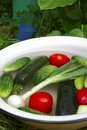 Free Vegetables In The Basin: Tomatoes, Cucumbers, Onion Royalty Free Stock Photo - 1092885